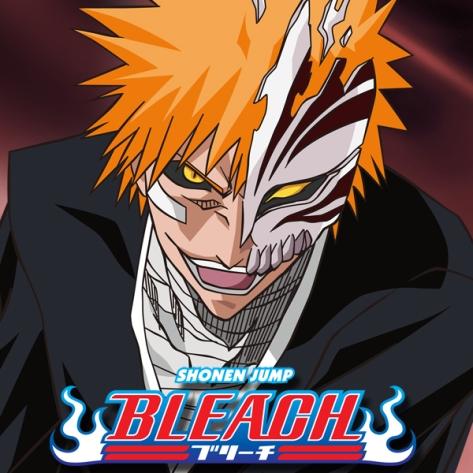 bleach_s8